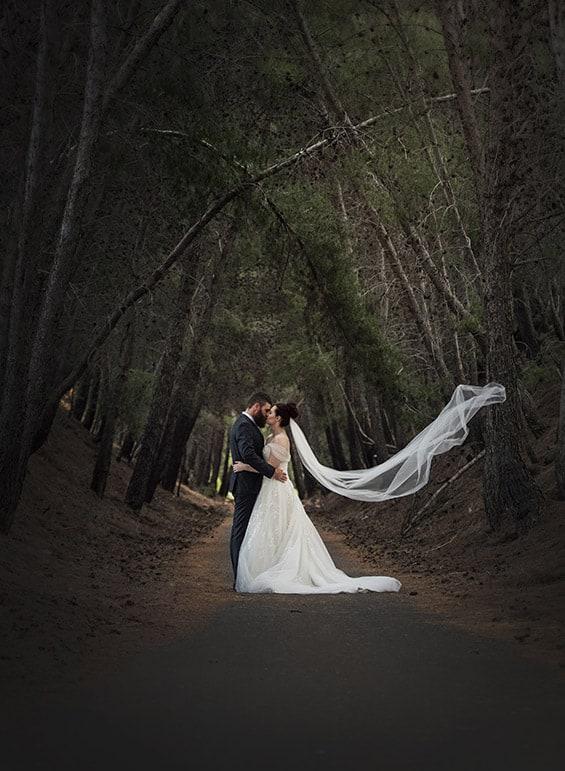 St Francis Winery Wedding - Jess & Chris 45